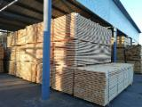FSC Pine Lumber, 23+ mm thick