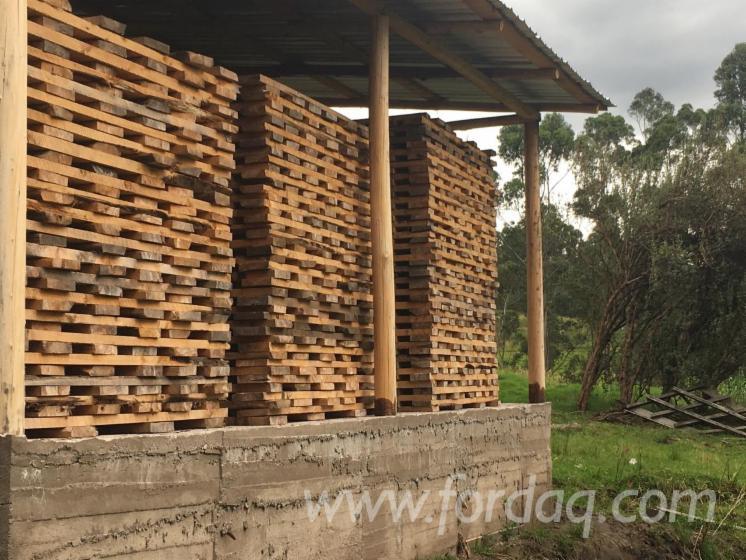 Vend Merrains, Douelles Eucalyptus Thermo Traité 28 mm Andean Mountains Equateur