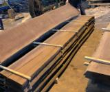 Find best timber supplies on Fordaq - SEGHERIA GRANDA LEGNAMI SRL - European Black Walnut Unedged Loose Lumber, 50 mm