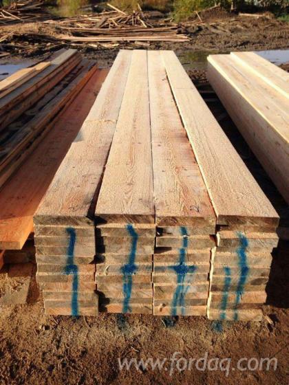 Tarcica Nieobrzynana, Sosna Zwyczajna - Redwood