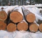 Forêts et Grumes - Vend Grumes De Sciage Pin Arolle - Новосибирск