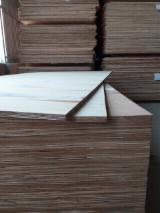 Bintangor Commercial Plywood, 12mm