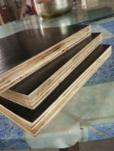 单板及镶板 - 覆膜胶合板(棕膜)