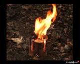 薪材、木质颗粒及木废料 - 劈切薪材 – 未劈切 未开裂的薪材/未开裂原木 桦木, 榉木, 橡木
