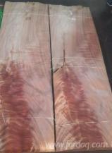 Red Wood Sliced Veneer, Crotch Cut, 0.5 mm