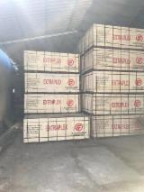 Poplar Film Plywood, 20mm