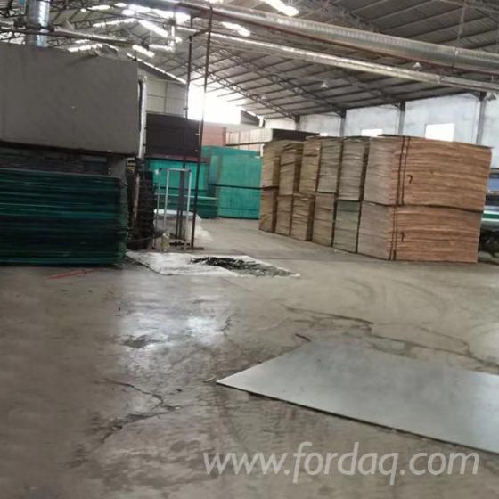 Vend Contreplaqué Commercial 20 mm Chine