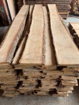 FSC White Oak Unedged Timber, AB/ABC, KD