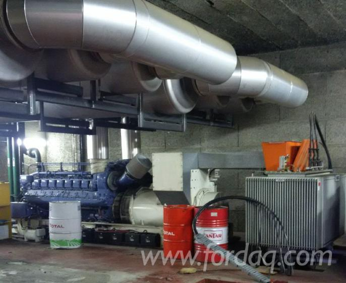 Used 1998 Generation Of Energy And Heating Using Wood Fuels - Other For Sale Romania