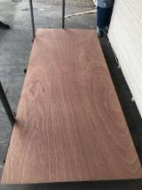 Natural Sapele veneer faced door plywood