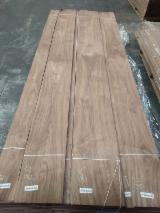Find best timber supplies on Fordaq - WOODIMEX ORMAN ÜRÜNLERİ SAN.TİC.LTD.ŞTİ. - Walnut Natural Veneer, 0.52 mm