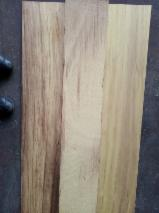 Trouvez tous les produits bois sur Fordaq - Stemau Srl - Vend Panneau Collé En Bois Massif Iroko 3.2 mm