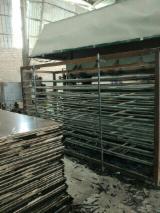 Znajdz najlepszych dostawców drewna na Fordaq - Galahome Furniture Co.,Ltd - Sklejka Z Filmem (Brązowym)