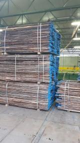 Find best timber supplies on Fordaq - Latifoglia Srl - KD Oak Loose, 22/26 mm