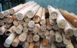 Pellets, Feuerholz Und Hackschnitzel - Buchen Brennholz, Stammabschnitte und Restrollen