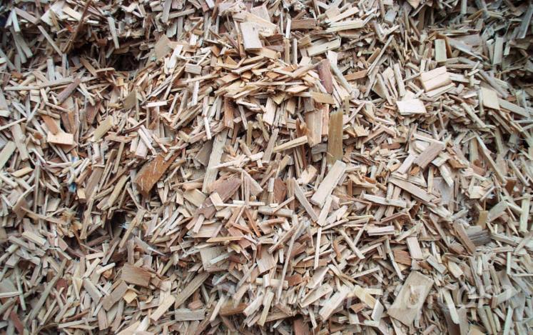 Beech Chips, 15 ton/spot