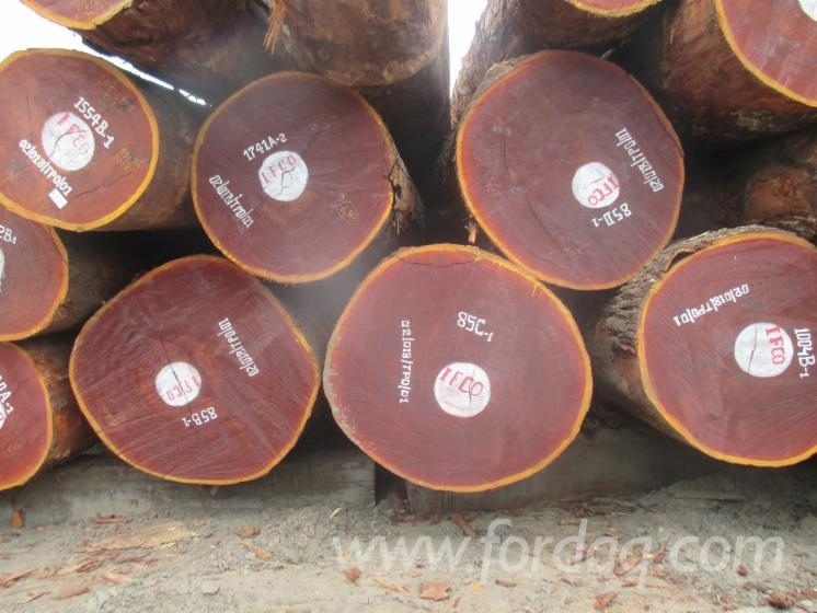 Mukulungu Round Logs, 60+ cm