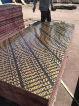 Finden Sie Holzlieferanten auf Fordaq - Linyi Sensen Wood Industry Co.,Ltd - Filmbeschichtetes Sperrholz (brauner Film)