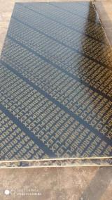 Vend Contreplaqué Filmé (Brun) 9-25 mm Chine