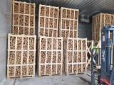 KD Oak/Birch/Ash Firewood, 25 cm Length