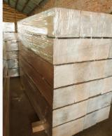 Russian White Oak Logs, Lafet and Cubes
