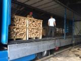 Dąb, Jesion Amerykański Drewno Kominkowe/Kłody Łupane Ukraina