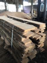 硬木:毛边材 - 毛刺 - 圆柱 - 木球, 橡木