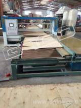Woodworking Machinery - New GTCO Maxdum Plywood Paving Machine, 2018