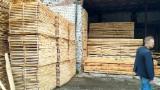 KD/Fresh Pine Sawn Timber, 16/22 mm
