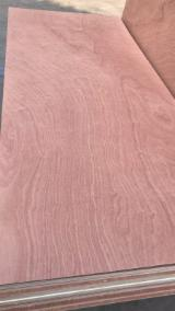 Sapele Veneer Door Skin Panel (Flush Door), 2.5-3.6 mm