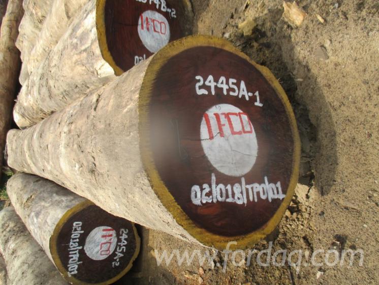Iatandza-Saw-Logs