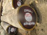 Trouvez tous les produits bois sur Fordaq - Industrie Forestiere du Congo (IFCO) S.a.r.l. - Vend Grumes De Sciage Iatandza