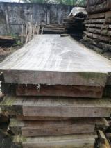 Find best timber supplies on Fordaq - MADERAS y MADERAS SA - Fresh Sawn Saman Beams, 5 cm