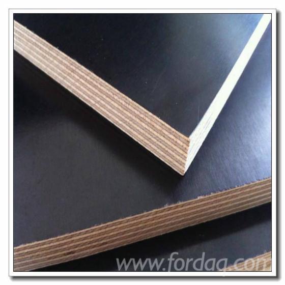 Poplar-Black-Film-Faced-Plywood--Eucalyptus-Birch-Core
