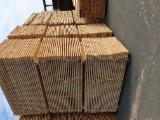 Embalagens de madeira Pinus - Sequóia Vermelha Transporte Seco (KD 18-20%)