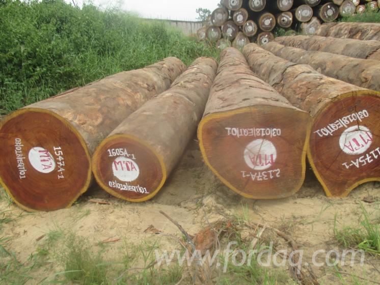 Vend-Grumes-De-Sciage-Tali-R%C3%A9p-D%C3%A9m-Congo
