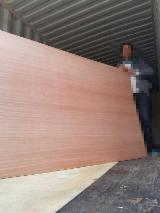 Sapelli/Oak/Teak/Black Walnut Plywood, 2.0-18 mm