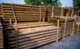Oak Poles/Stakes Required, 6-15 cm