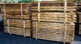 Comprar Madeira Redonda De Formato Cónico Pinus - Sequóia Vermelha Polônia