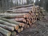 Oak/Beech Industrial Logs, 30 cm