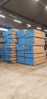 KD European Oak Boards, 210+ cm