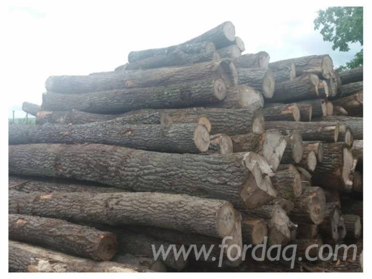Wholesale Turkish Oak Firewood/Woodlogs Not Cleaved from Romania