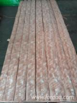 Find best timber supplies on Fordaq - Wood House Ltd - Indian Eucalyptus Veneer, Quartered, 0.5 mm