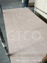 Poplar Core Commercial Plywood (Furniture, Packing), 2-21 mm