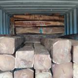 Servizi di Trasporto - Trasporto Marittimo Containers