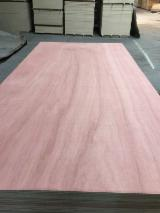 BB/CC Red Face Poplar Commercial Plywood, 2-21 mm