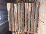 Find best timber supplies on Fordaq - Schaeferwerk Gödeke GmbH & Co. KG - KD Oak Boules, AB, 4000-4500 mm