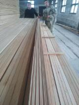Find best timber supplies on Fordaq - Forest Trade Ukraine - FJ Pine Interior Wall Paneling, Grade A, 12.5 mm