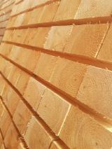 Znajdz najlepszych dostawców drewna na Fordaq - Retim Europe OU - Sosna Zwyczajna - Redwood, 1500 m3 na miesiąc