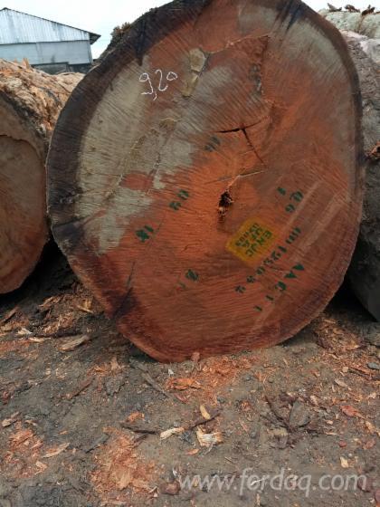 Azob%C3%A9-Industrial-Logs